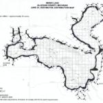 Treatment of Invasive Plants in Miner Lake